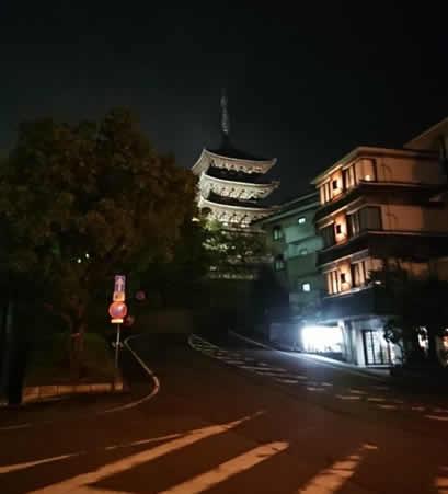 第33回 日本整形外科学会基礎学術集会 参加記
