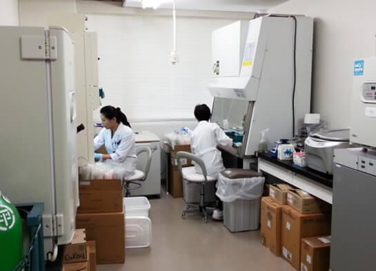 細胞培養実験室