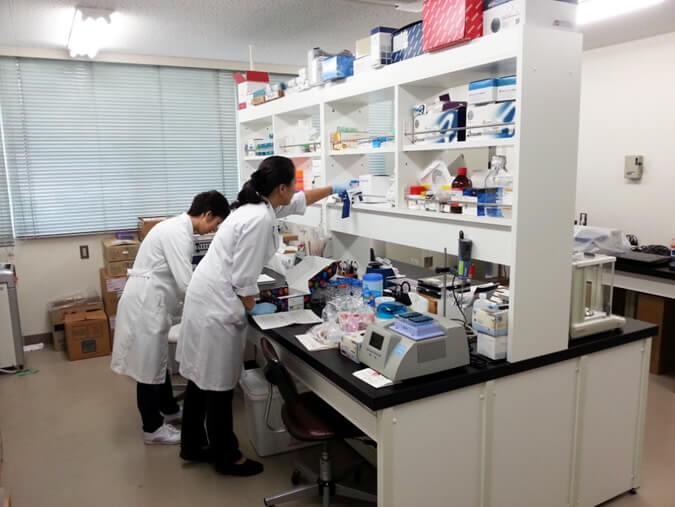 分子生物学実験室